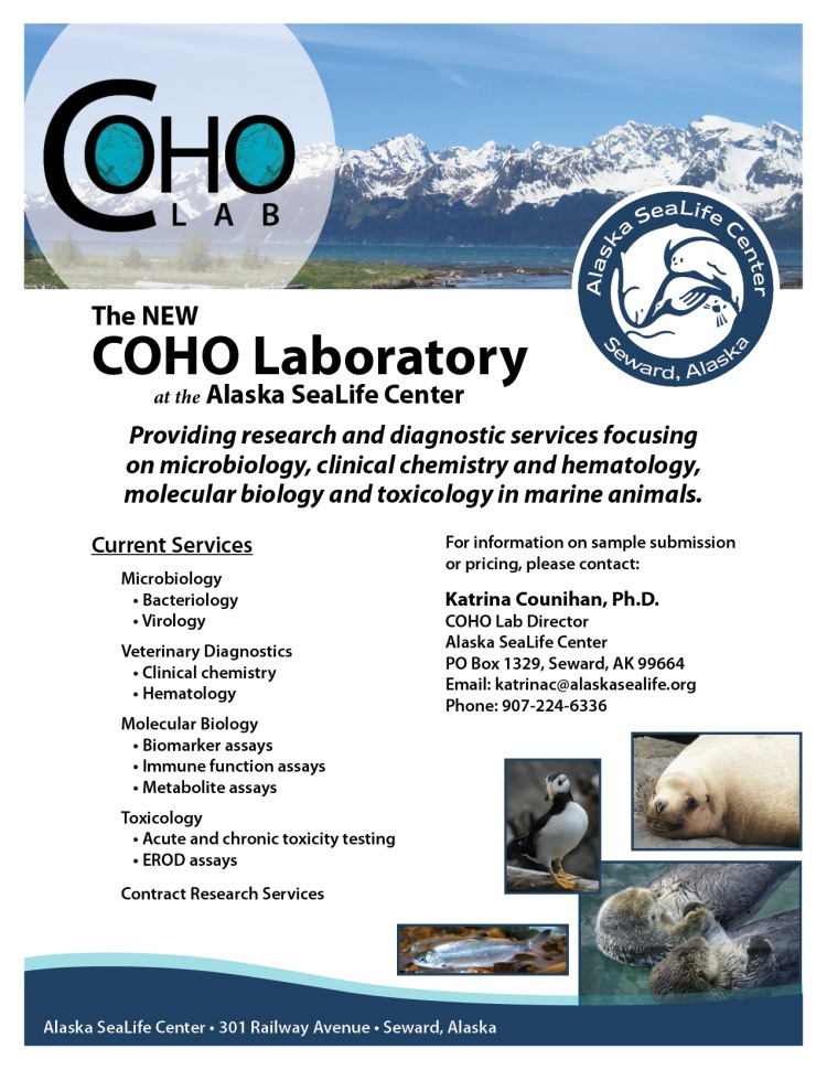 CoHo Lab Promotion